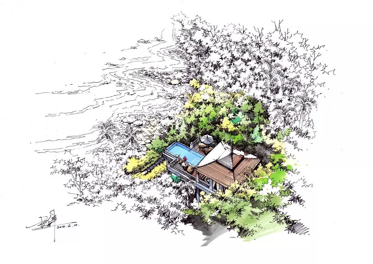 达方式,灌木、乔木、针叶类植以及热带植物,都在这里相互辉映.